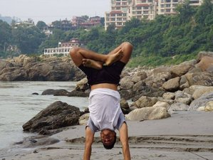 28 Days 200-Hour Ashtanga, Hatha, and Vinyasa Yoga Teacher Training in Rishikesh, India