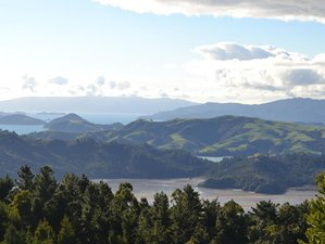 5 Day Yoga and Meditation Retreat in Coromandel, New Zealand