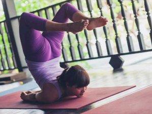 36 Day 300 Hour Advanced Certification Yoga Teacher Training In Koh Samui Surat Thani Bookyogateachertraining Com