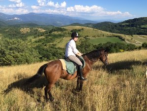5 Day Short Break in the Saddle Horse Riding Holiday in Spoleto, Province of Perugia