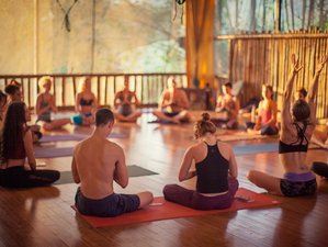 6 Day Resolutions Yoga Retreat in Dominical