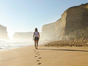 Detox & Walking