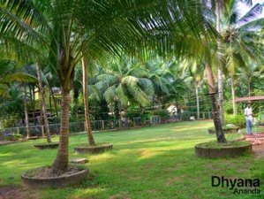 15 jours en vacances culturelles de yoga et ayurveda dans les backwaters de l'Inde du sud