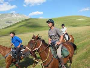 8 Day Summer Horse Riding Adventure in Spoleto, Province of Perugia