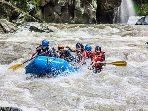 13 Day Adventure and Wildlife Tour in Costa Rica