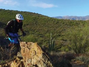 5 Days Best of Phoenix Mountain Bike Tour in Arizona, USA