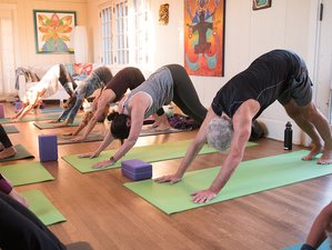 4 Days Soul Shine Yoga Retreat in Manitou Springs, USA