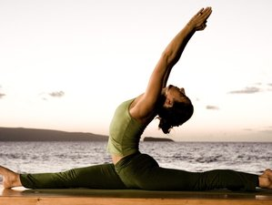14 Day Ayurveda Yoga Holiday in Kerala