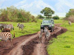 4 Days Wildlife Tour Safari in Kenya