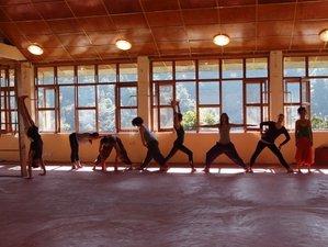 15 Days Yoga & Ayurveda at Village Manyana, India