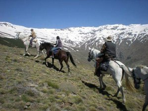 6 Day Spectacular Alpujarra Trail Ride Holiday in Lanjarón, Andalusia