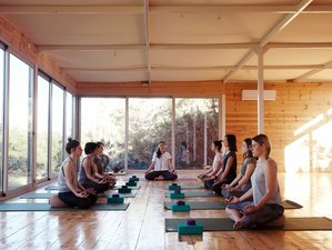 25 Day 200-Hour Yoga Teacher Training Hatha Yoga Alignment & Ayurveda Immersion in Naousa, Paros