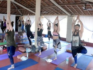 23 Day Compact and Intense 200-Hour Yoga Teacher Training in Goa