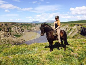 6 Days Northern Exposure Horse Riding Tour in North Iceland