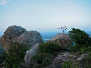 15 días energizante y revigorizante retiro de yoga en Dambulla, Sri Lanka