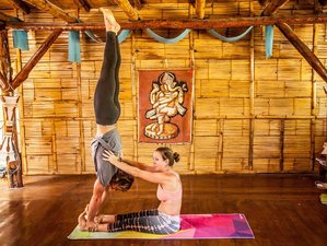 30 Days 200-Hour Yoga Teacher Training Ecuador