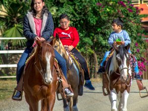 4 Days Wonderful Horse Riding Holiday in Jalisco, Mexico