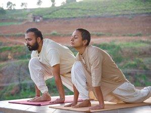 23 días de rejuvenecedor retiro con Hatha yoga clásico en las montañas Azules en Tamil Nadu, India
