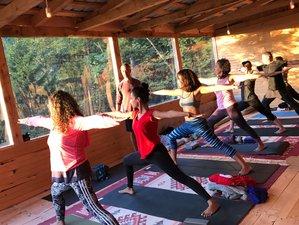 5 Days Yoga Retreat in Artvin - Macahel, Turkey