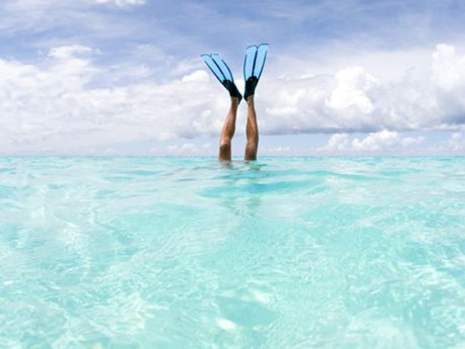 8 Days Scuba Diving and Yoga Retreat in Bonaire