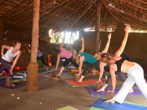 8 Days Relax, Nourish, and Revive Meditation and Yoga Retreat in Goa, India