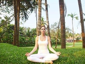 8 Days Detox Detour Program and Yoga Retreat in Goa, India