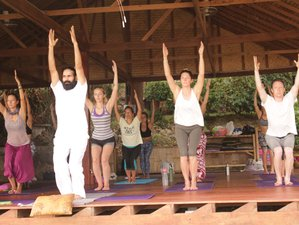 4 Day Online D'vine Kriya Yoga Workshop Straight from the Capital of Yoga