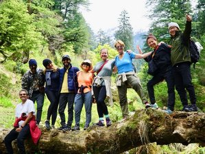 30 Day Re-Discover Yourself Transform Your Body, Mind, and Soul in Palampur