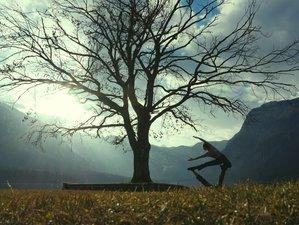 4 días retiro de Acroyoga y yogo en Dömös, Hungría