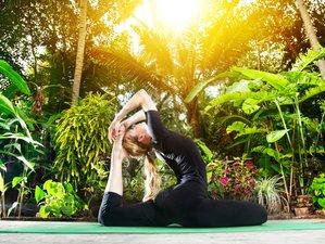 10 Days Mindfulness Yoga Retreat with Hatha Yoga School in Goa, India