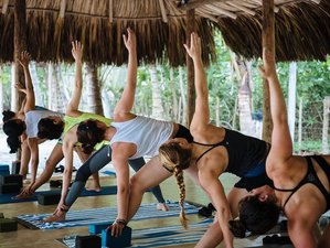 5 Day Yoga, Connection, and Meditation Retreat near the Sierra Nevada of Santa Marta