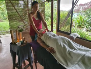 4 Day Detox Holiday with Daily Yoga in Arenal, Alajuela