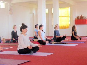 28 Days 300-Hour Yoga Teacher Training in Dharamsala