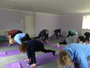 4 Day Meditation, Yoga, and Nature Therapy Retreat in Powys, Wales