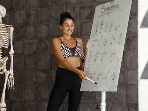 Self-paced Guided 200-Hour Online Accredited Yoga Teacher Training