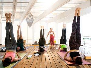 7 Day Full Moon Wellness and Yoga Retreat in Playa del Carmen, Quintana Roo