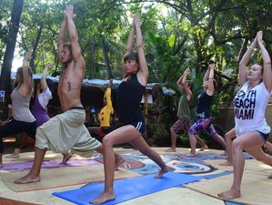 33 Day 300 Hours Multistyle Yoga Teacher Training in Rishikesh