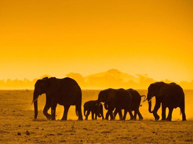 21 Days Budget Safari in Namibia, Zambia, Botswana, & South Africa