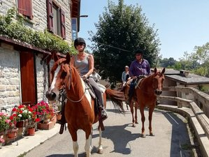 5 Day Fantastic Horse Riding on an Italian Ranch in Emilia-Romagna, Italy