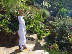 8 Day Private Detox Retreat with Raw Food and Yoga for 1 or 2 Guests on La Palma, Canary Islands