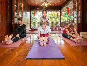 4 Days Vinyasa, Yin, and Ashtanga & Yoga Nidra Retreat Chiang Rai, Thailand