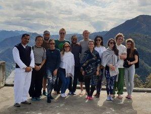 28 Day 200-Hour Yoga Teacher Training in Tapovan, Rishikesh