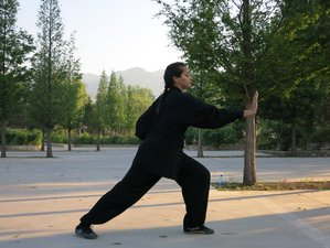 10 Months Study Chinese Martial Arts & Culture in China