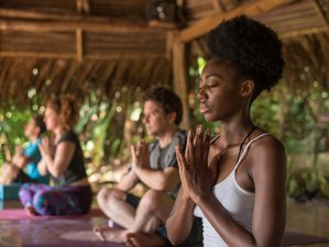 8 Day Healing with Plant Consciousness - Ayahuasca Journey and Yoga Holiday in Cabuya, Puntarenas