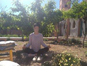 1 Week of Martial Arts, Detox, Self Defense, Cultural Exchange, and Meditation in Marrakech, Morocco