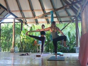 21 Day 200-Hour Earth Medicine Yoga Teacher Training in Sayulita