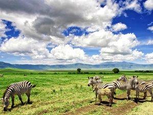 6 Days Camping Safari and Bushmen Experience in Tanzania