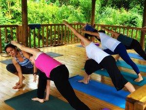 8-Daagse Holistische Surf en Yoga Retraite in Puntarenas Province, Costa Rica