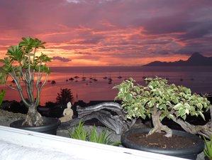 Surffreundlicher Ort mit Aussicht auf Taapuna in Tahiti, Französisch-Polynesien