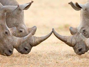 8 Days Classic Wildlife Tour and Safari in Tanzania